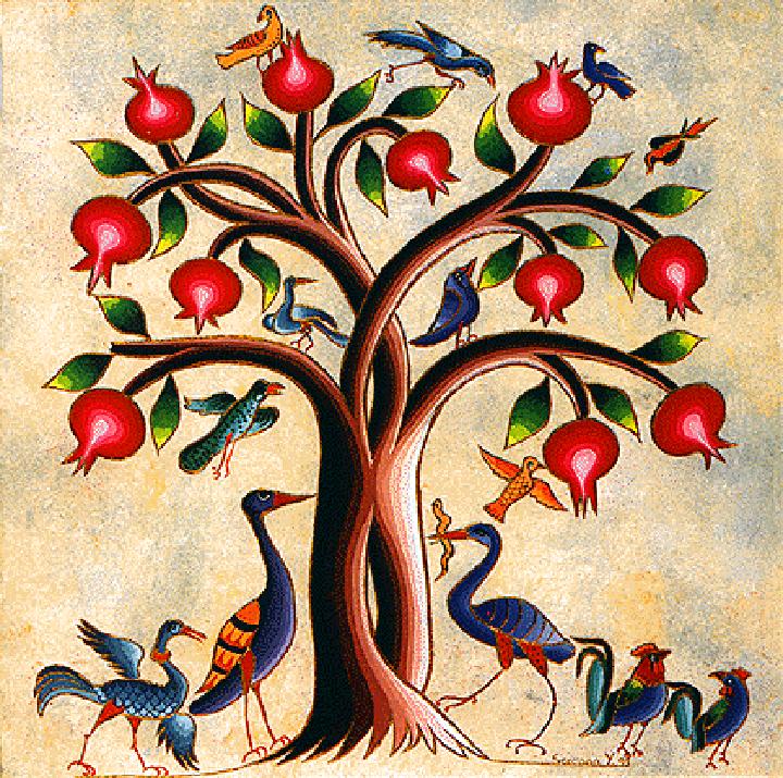 Çilgin nar ağaci elitis