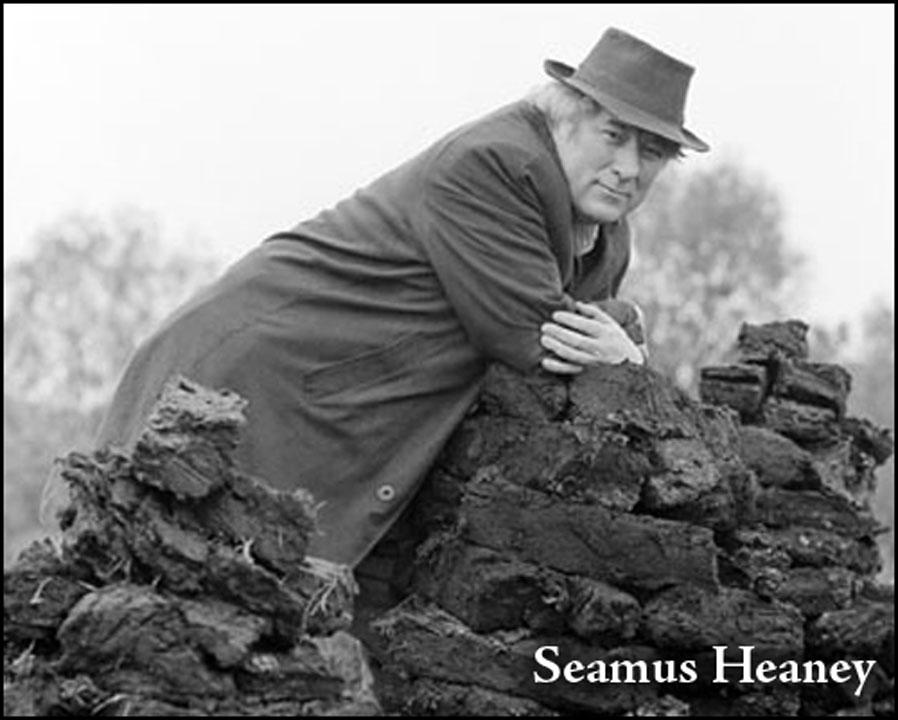 punishment by seamus heaney essay