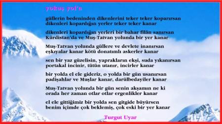 Turgu1
