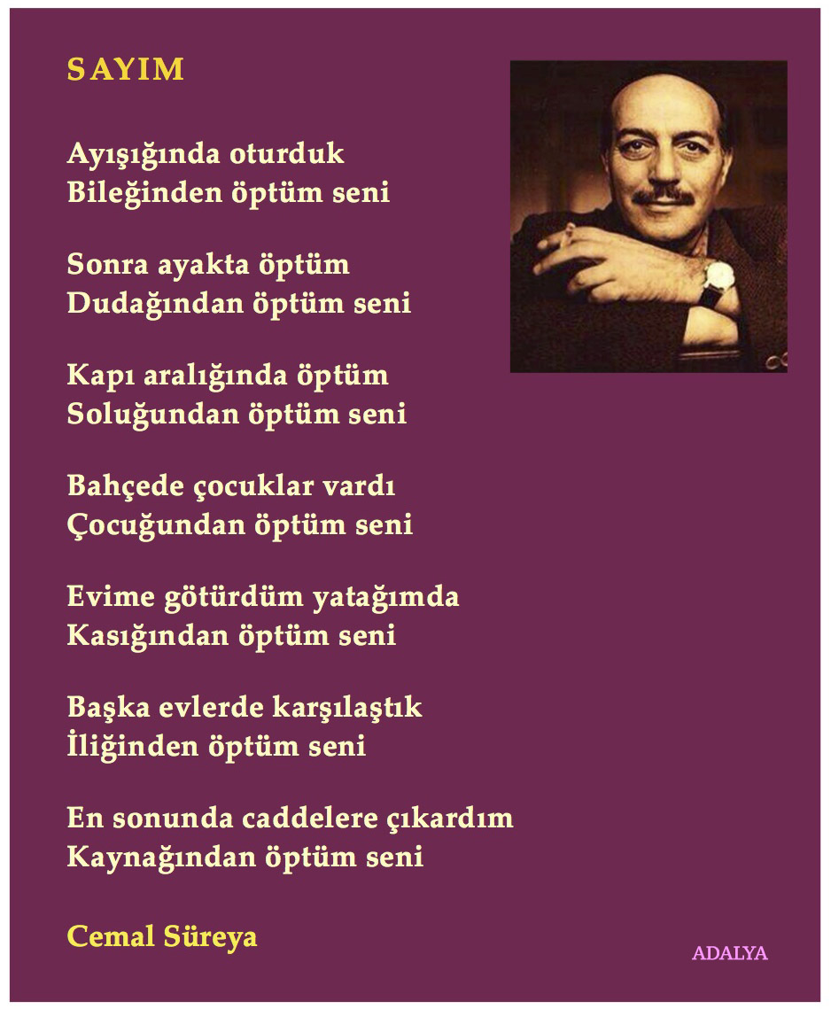 Cemal Süreya Sayım Simge şiir Edebiyat